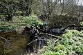 Pincey Brook looking west near Church Lane, Sheering, Essex, England 02.jpg