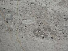Piso de m rmol for Concepto de marmol