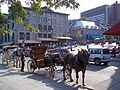 Place Jacques-Cartier 064.JPG