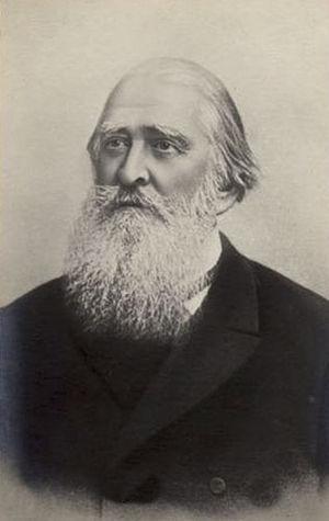 Aleksey Pleshcheyev - A. N. Pleshcheyev, 1880s