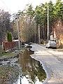 Pludi druvciema 2011 - panoramio (35).jpg