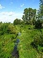 Podlaskie - Michalowo - Michalowo - Bialostocka - Suprasl river.JPG