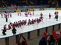 Poland vs. Austria at 2017 IIHF World Championship Division I 07.jpg