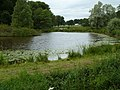 Pond at Arley Green, Cheshire-geograph-2251641-by-Anthony-ONeil.jpg
