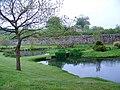 Ponds near Ugbrooke House - geograph.org.uk - 1374233.jpg