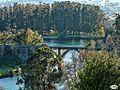 Pontevedra-Puente del ferrocarril (4355863038).jpg
