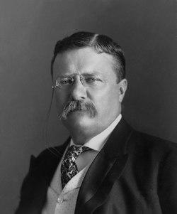 Theodore Roosevelt – Wikipédia, a enciclopédia livre