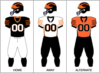Princeton Tigers football - Image: Princeton Football Uniform 2009
