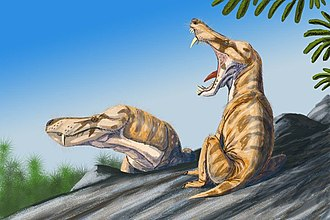 Therapsid - Illustration of Pristerognathus, a cat-sized therocephalian therapsid