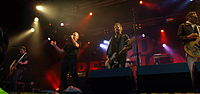 Provinssirock 20130614 - Bad Religion - 10.jpg