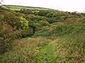 Public footpath near Well Dale - geograph.org.uk - 586400.jpg