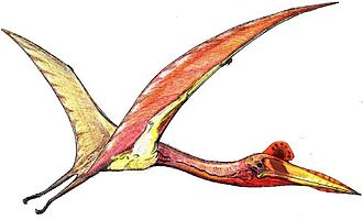 Quetzalcoatlus - Artist's impression of an individual in flight