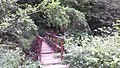 Rózsika-forrás 20170723 160445.jpg