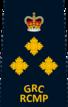 Superintendent Polizei
