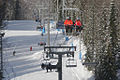 RIAN archive 844287 Alpine skiing in Krasnaya Polyana.jpg