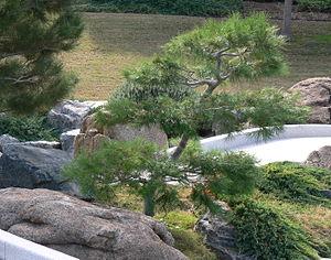 Ro Ho En - Image: RO HO EN 2007 Dec 08 40230 1