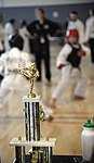 Ramstein holds youth martial arts tournament 150228-F-EN010-308.jpg