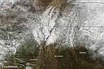 Rare Snow in the U.S. South (Detail) (5351461813).jpg