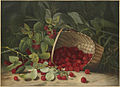 Raspberries by Boston Public Library.jpg