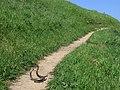 Rattlesnake Dance 03.jpg