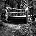 Ravine footbridge David A Balfour Park.jpg