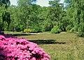 rhododendron park bremen wikipedia. Black Bedroom Furniture Sets. Home Design Ideas