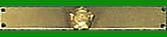 Ribbon - Castle of Good Hope Decoration & Bar.png