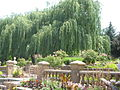 Ricks Memorial Gardens.JPG