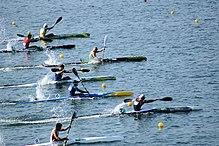 Rio 2016. Canoagem de velocidade-Canoe sprint (28860179530).jpg