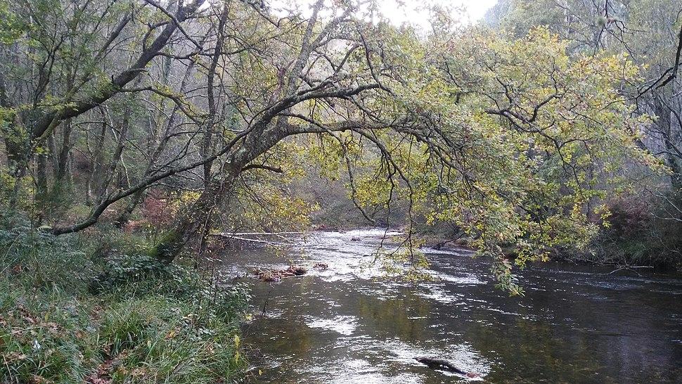 Río Eume ó seu paso polo lugar