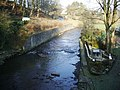 River Darwen, Feniscowles - geograph.org.uk - 638368.jpg