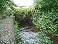 River Darwen - geograph.org.uk - 973719.jpg