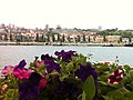 River view (8907439988).jpg