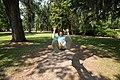 Riverfront Park swing (27721002572).jpg