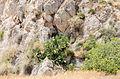 Rock formations near Exomitis - Santorini - Greece - 04.jpg