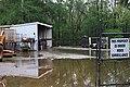Roman Forest Flood Waters - 4-19-16 (26430647112).jpg