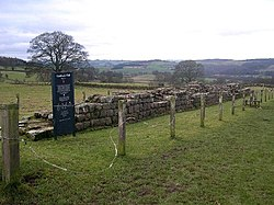 Hadrian's Wall at Planetrees