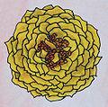 Rosenblütenfüllung Starkgefüllt (Ab 40 Petalen).jpg