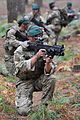 Royal Marine Commandos on Exercise in British Woodland MOD 45153420.jpg