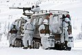 Royal Marines from 45 Cdo on Winter Deployment MOD 45151159.jpg