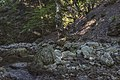 Ruisseau du Vialais, Haut-Languedoc, Rosis cf08.jpg