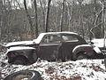 Rust Palmersville2.jpg