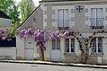 Saint-Jean-Saint-Germain (Indre-et-Loire) (25606272637).jpg