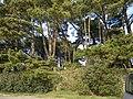 Saint philibert - panoramio (6).jpg