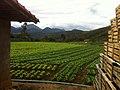 Salada - panoramio (6).jpg