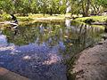 Salado springs 2008.jpg