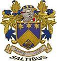 Saltibus Logo.jpg