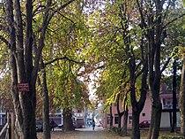 Samac path.jpg