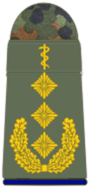 Joint Medical Service (Germany)