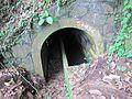 Sao Tome Ponta Figo Hike Hydropower Tunnels 5 (16061579988).jpg